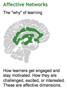 Affective Network/Engagement | Universal Design for Learning in HCPSS