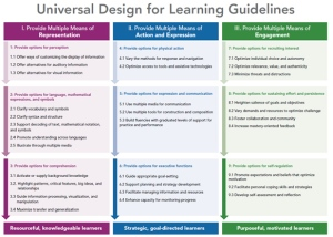columns of UDL guidelines